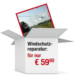 Windschutzreparatur